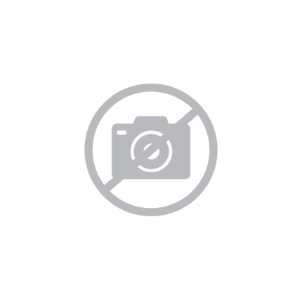 Sun, fun and sunnies - Summer 2021